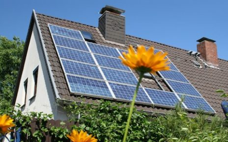Solar Panels From Backyard Waste? A New Reach Of Bio Photovoltaics.