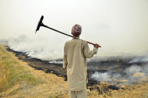 stubble burning-india- pollution- solution