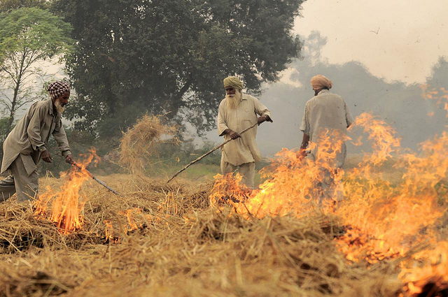 stubble burning- air pollution- india - issues