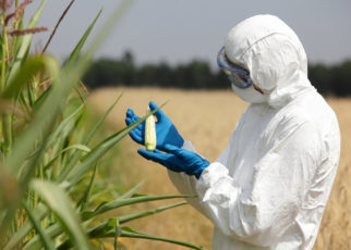 GMO Myths fears scientific explanations good or bad