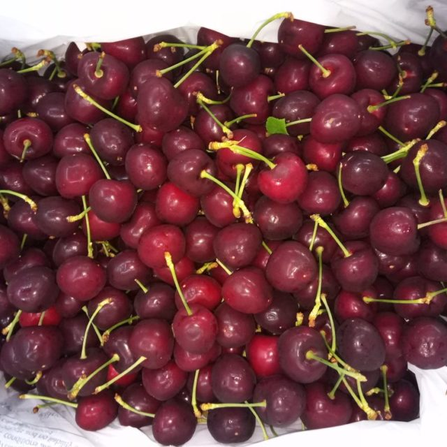 exotic fruits of india cherry