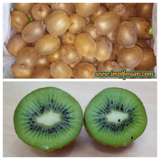 exotic fruits of india kiwi fruit