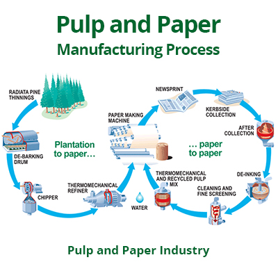 Paper - paperless harms environment