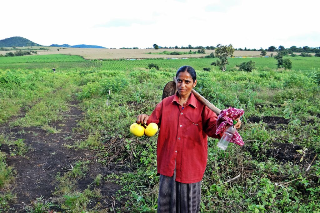 feminisation of agriculture in india