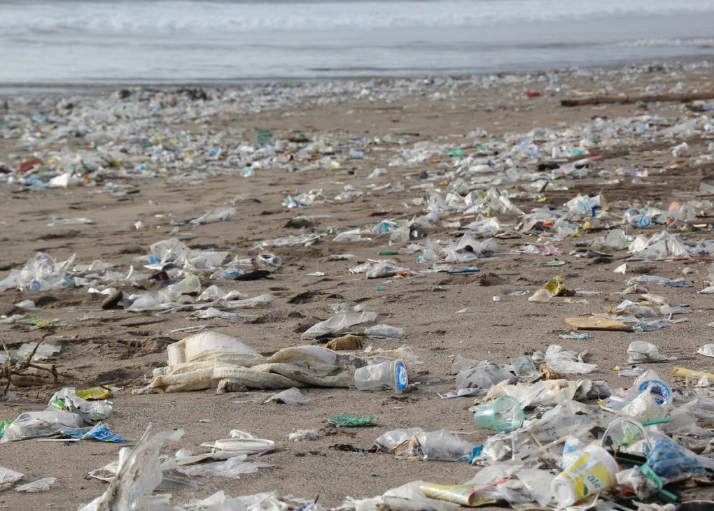 end plastic pollution earth day