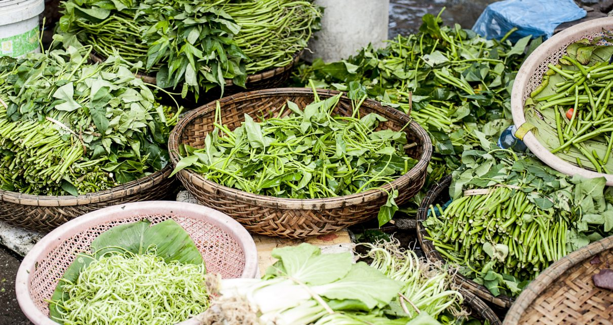 greens - India - spinach