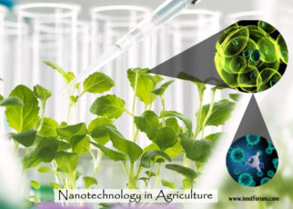 Application of Nanotechnology in Agriculture