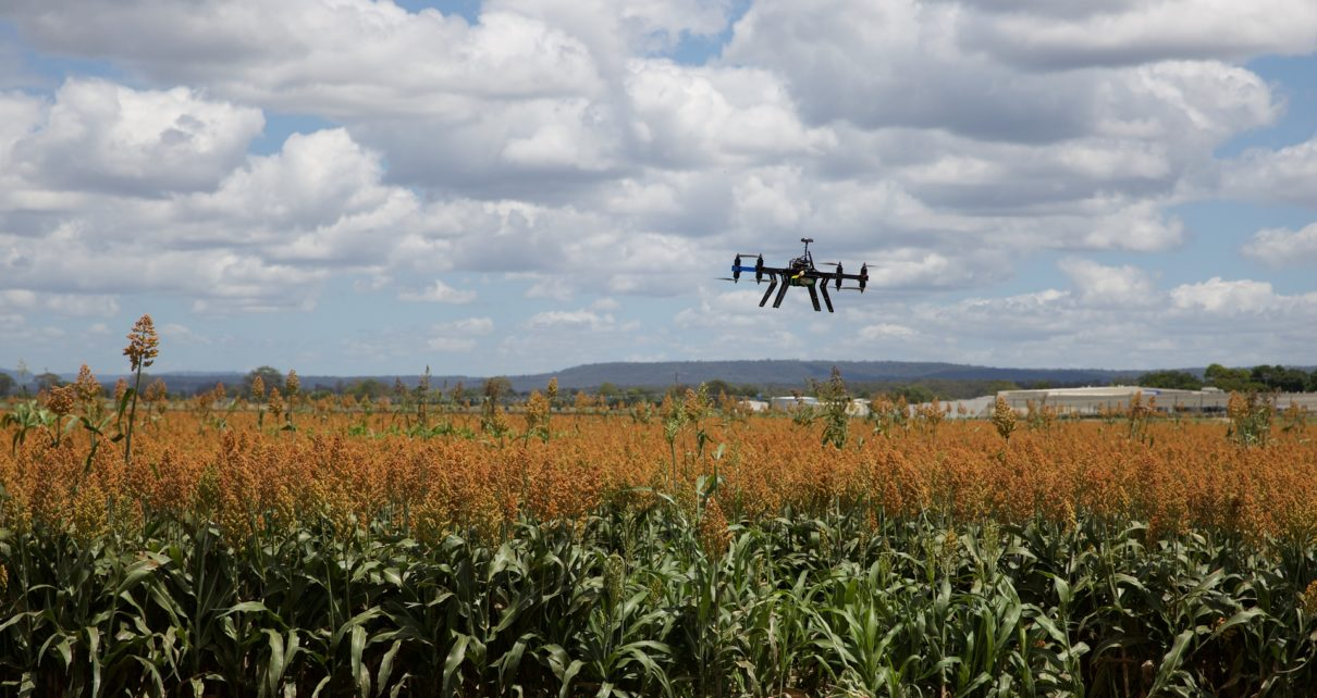 Science and Technology Shaping Indian Agriculture