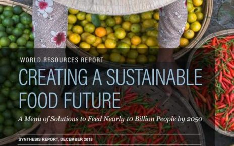 New Research Outlines 5-Course 'Menu of Solutions' to Achieve Sustainable Food Future