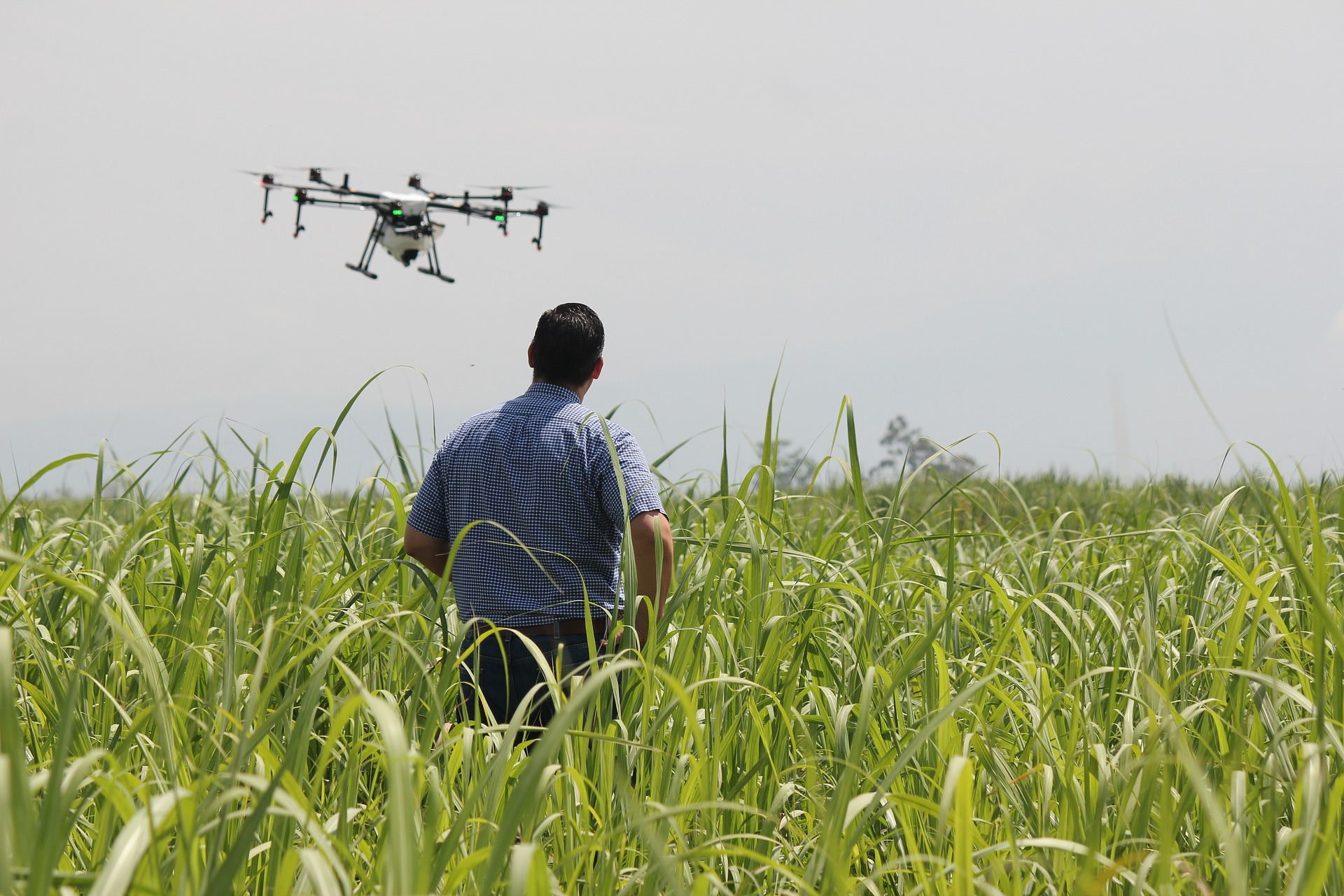 Drone pilots for agriculture in India